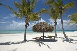Mozambique Island Holiday - Pemba and Matemo Holiday Package