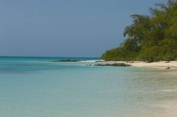 Mozambique Island Holiday - Vamizi Island Holiday Package