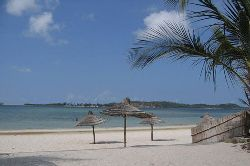 Mozambique Day Tour Offers